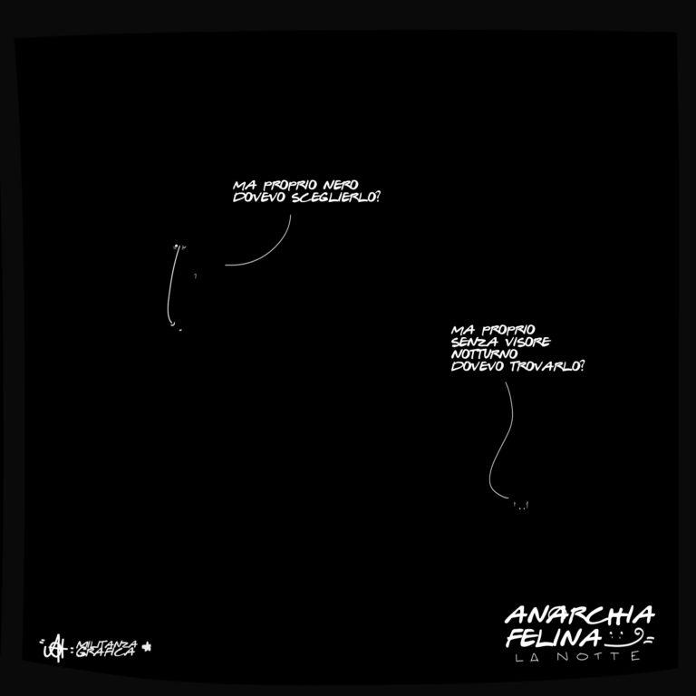 Anarchia Felina: La Notte