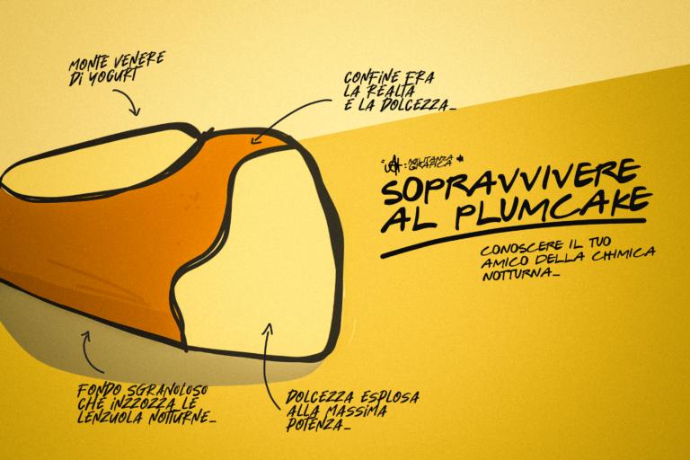 Chimica militante: sopravvivere al plumcake