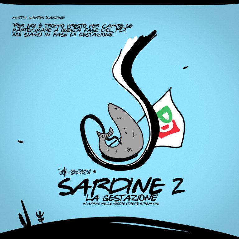 Sardine 2 – La Gestazione